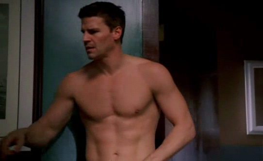 Booth – He's a 'Fun and Sexy Guy', Don't You Know… | Bones Theory